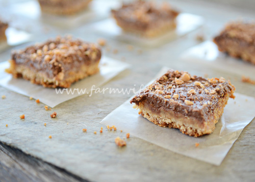 these chocolate toffee bars are simply delicious!