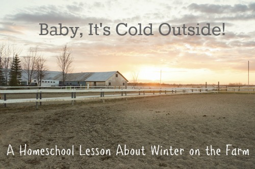 Winter on the Farm Homeschool Lesson
