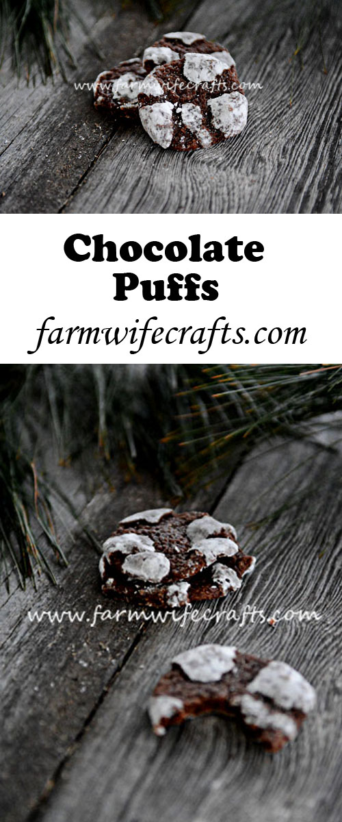 Just like the popular Chocolate Crinkles, but with a different name, these Chocolate Puffs are fudgy and gooey and perfect for the holidays!