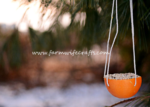 A simple to make all-natural orange bird feeder made from an orange.