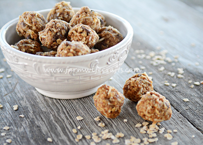 Are you looking for a healthy, easy-to-make snack that will help keep your busy crew energized?  Are you a busy mom like me?  You need these No-Bake Energy Bites in your life!