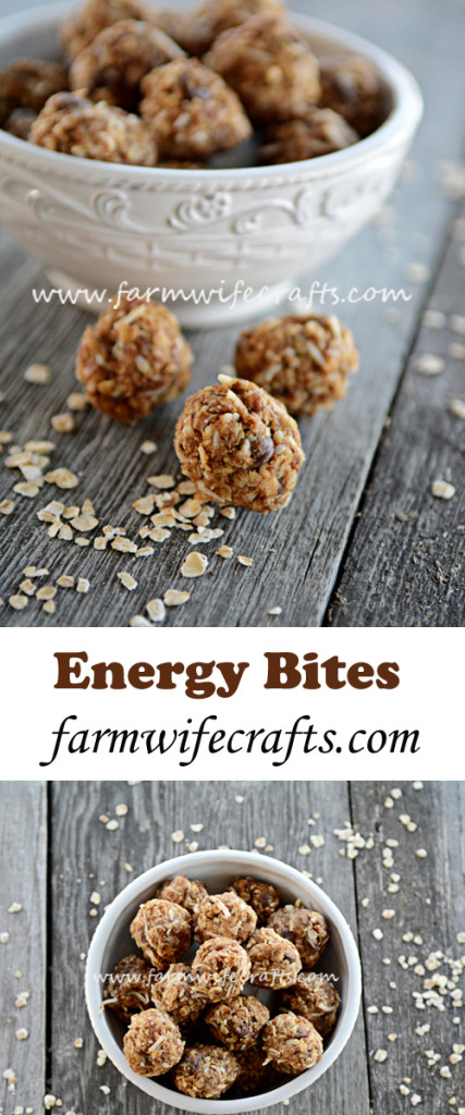 Are you looking for an easy yet healthy after-school snack for your kids? These no-bake energy bites are what you need in your life!