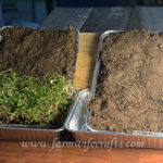 Soil Erosion Science Experiment