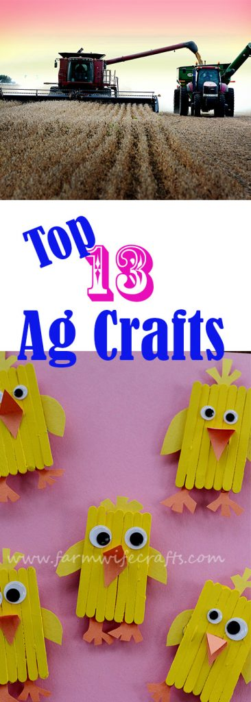 Are you looking for some fun and educational ways to teach your kids more about the world of agriculture?  I have compiled my top 13 Ag crafts to share with you!