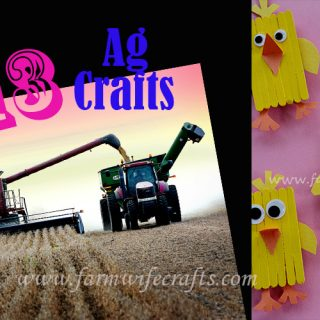 Are you looking for some fun and educational ways to teach your kids more about the world of agriculture? I have compiled my top 12 Ag crafts to share with you!