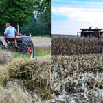 What is a Cover Crop…Plus My Favorite Meals to Take to the Field