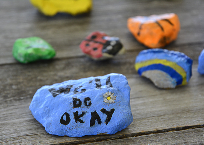"""Have you all heard of the kindness project with painted rocks? Well, we jumped on the bandwagon even if we didn't follow the """"rules,"""" but that's just how we roll."""
