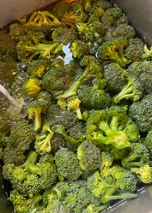 Did you decide to plant broccoli in your garden this year?  If so, here is a simple recipe that shows you how to freeze broccoli!